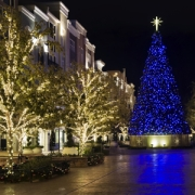 Commercial-Christmas-Light-Installation
